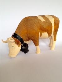 Simmentaler Kuh fressend